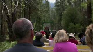 Yosemite Tram Tour and Shuttle Bus - National Park X