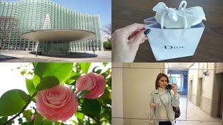 Vlog Токио| Одежда Issey Miyake Art, Покупки, Весна, Суши - Видео от Каролина Жарко