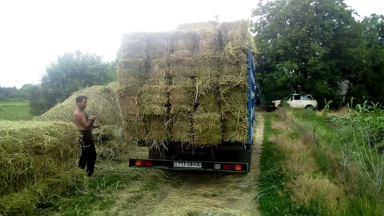 Удлинить Газель, ФОТОН, Зил Бычок, КАМАЗ 4308, МАЗ Зубренок .