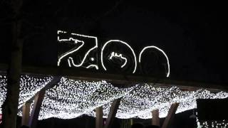Oregon Zoo animals frolic in snow