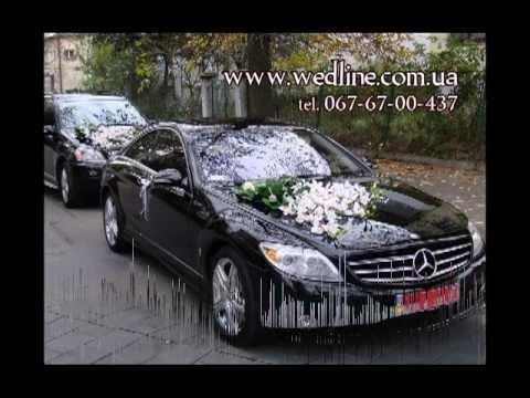 Украшение свадебных машин (машин на свадьбу) скачать