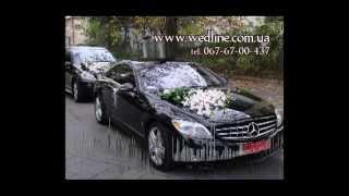 Украшение свадебных машин (машин на свадьбу)