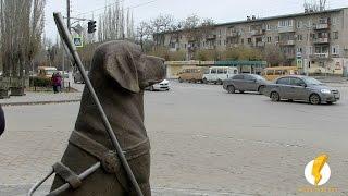 В Волжском открыт памятник собаке-поводырю