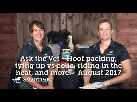 Ask the Vet - Hoof packing, tying up vs colic, riding in the heat, and more! - August 2017