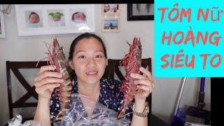 Vlog 1031 ll Đi Chợ Kiềm Lòng Không Được Khi Thấy TÔM NỮ HOÀNG SIÊU TO