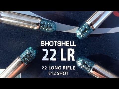 22 LR CCI Shotshell