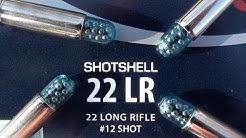 .22 LR CCI Shotshell
