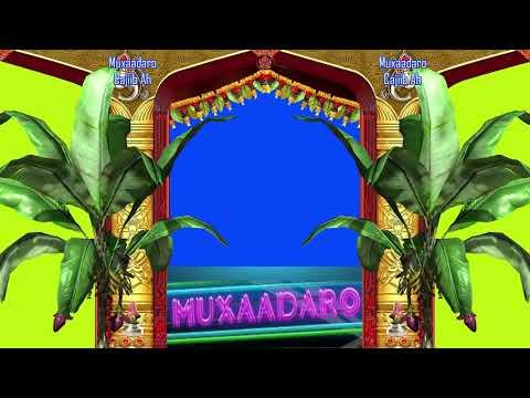 Muxaadaro Cajiib Ah Oo Qalbiga Taabanaysa┇Sh Xuseen Cali