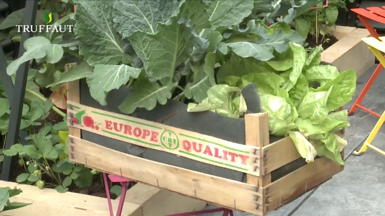 growing enough food for your family in small backyards fabriquer un jardin en hauteur