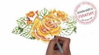 Как нарисовать колючую желтую розу поэтапно карандашом(Как нарисовать картинку поэтапно карандашом за короткий промежуток времени. Видео рассказывает о том,..., 2014-07-17T04:59:22.000Z)