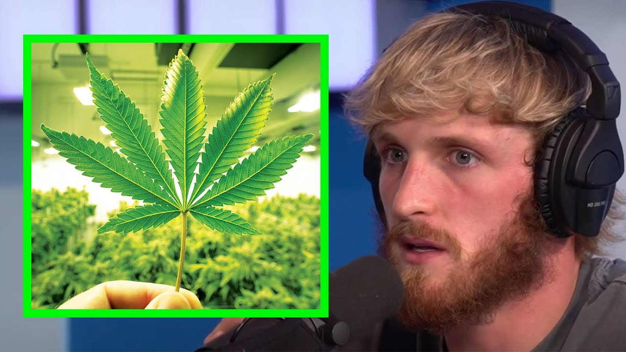Download LOGAN PAUL IS GOING THROUGH WEED WITHDRAWLS (AGAIN)
