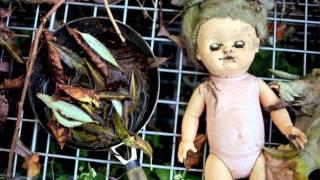 PJ Harvey - The Last Living Rose HD