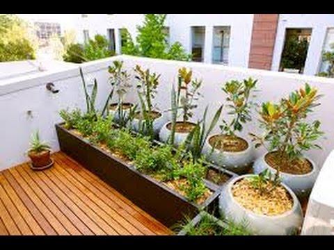 Como hacer jardin en azotea youtube - Hacer un jardin ...