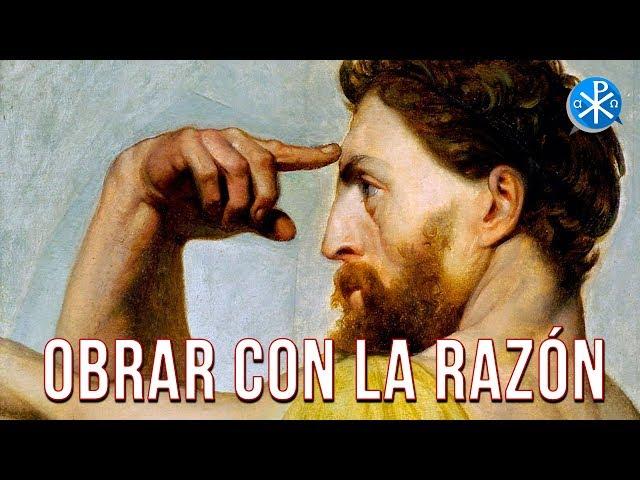 Obrar con la Razón   Perseverancia - P. Gustavo Lombardo