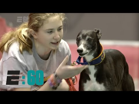 E:60 – Meet 'The Michael Jordan of Dogs'