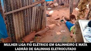 Mulher liga fio elétrico em galinheiro e mata ladrão de galinhas eletrocutado