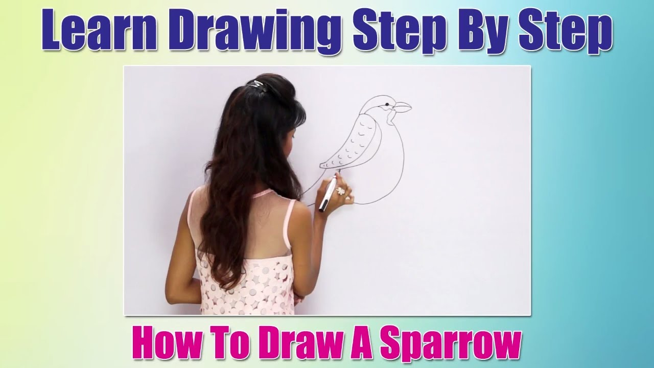 How To Draw Birds For Children How To Draw A Sparrow Learn