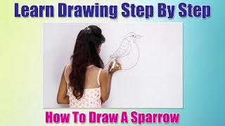 How to Draw Birds For Children | How to draw a Sparrow | Learn Drawing Step By Step For Beginners