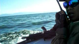 seaborne