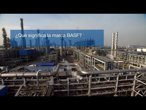 Elementos de la marca BASF