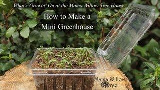 Mini Greenhouse How-To | What