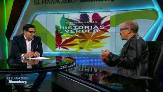 La planta de la mariguana ha sido víctima de una política alrededor del consumo: Eduardo Limón