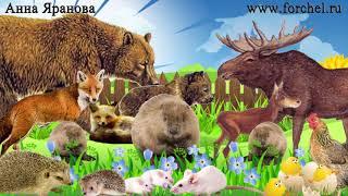 Лучшие детские развивающие видео апрель 2014. Best developing cartoons for babies. Наше_всё!(Раскраска-анимашка