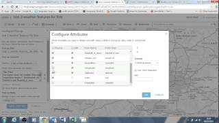 Workflow for ArcGIS Online data entry