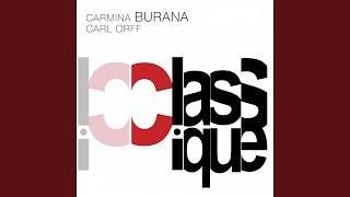 Carmina Burana: Uf dem anger. Tanz (Live)