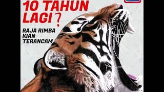 Harimau belang pupus 10 tahun lagi?