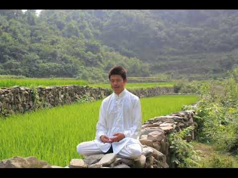 Zhineng Qigong : meditation to heal and awake human consciousness