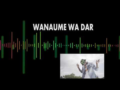 MUDY MSANII  WANAUME WA DAR ( OFFICIAL AUDIO )