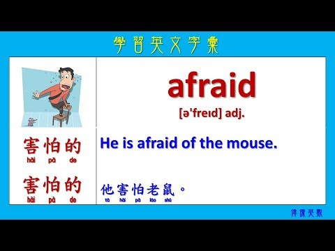 Easy English words for a beginner 04 (簡單必學初級英文單字) 含中文翻譯 - YouTube