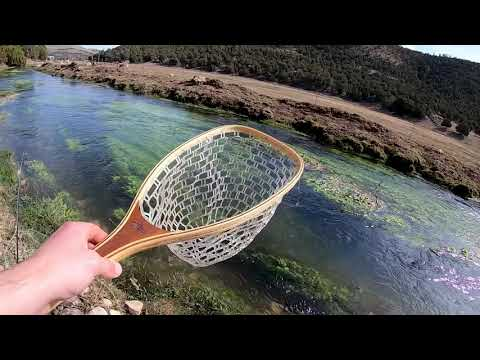 Fishing For Trout In New Mexico