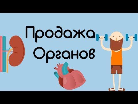Сколько стоят твои органы?