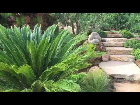 Cr ation sas corporandy grotte en tuff dans un jardin for Creation jardin mediterraneen