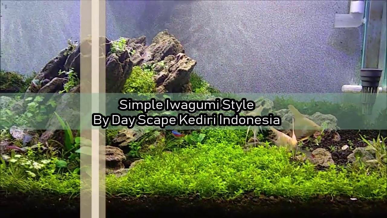 Nano Tank Aquascape Iwagumi 50 Cm Youtube