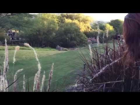 Cheetah 100-meter dash in 4.5 sec. San Diego Zoo Safari Park