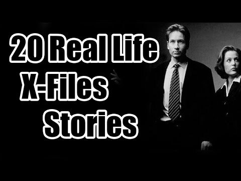 20 Real Life X Files stories from reddit