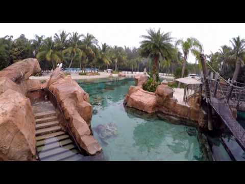 Discovery Cove Orlando  Gopro videos Dec 2016 pt.one
