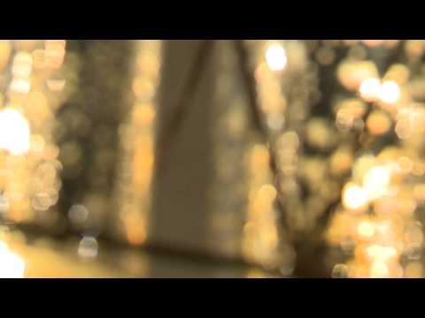 Progressive Business Media Promo Video