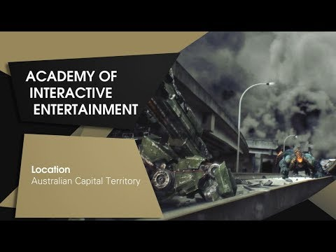 The Small Training Provider: Academy of Interactive Entertai