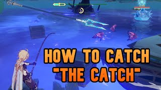 How to catch TΗE CATCH - Quick Guide