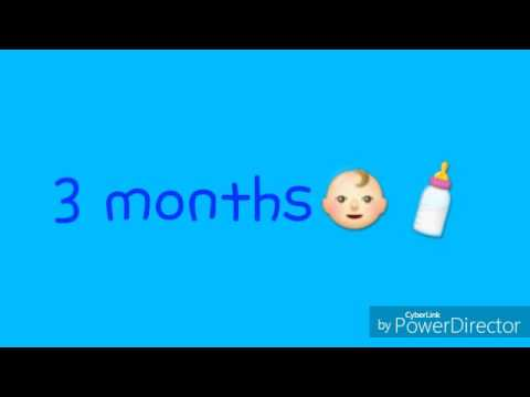 Pregnancy growth 3-9 months pictures (song by Rachel Platten- stand by you Mp3