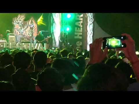Scared Of Bums - DAMAI (Live at Kuta Beach Festival)