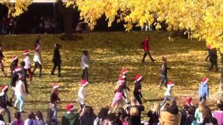 Albert Einstein Christmas Flashmob