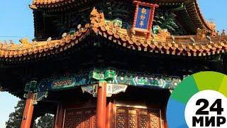 Праздник весны: В Китае встретили год Желтой Земляной Собаки - МИР 24