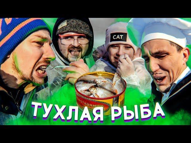 Блогеры пробуют Сюрстрёмминг / Масленников, Павлов, Тилльняшка