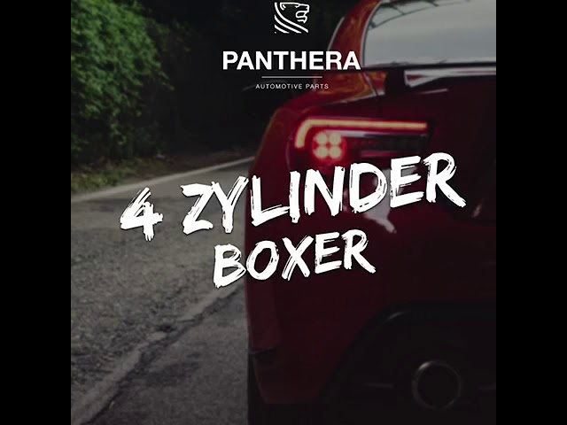 PANTHERA LEO Active Sound 4.0 - 4 Zylinder Boxer