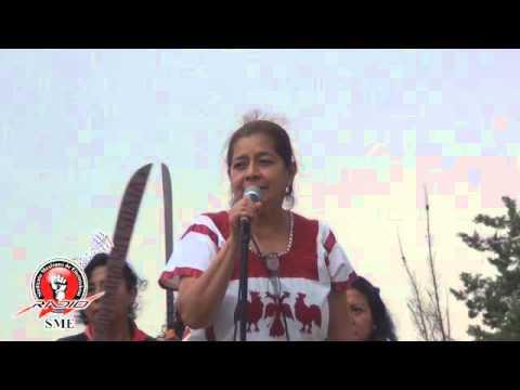 SME NCT 3era jornadad de solidaridad con Venezuela 19 abr16